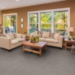 Dixie Carpet Colorworks