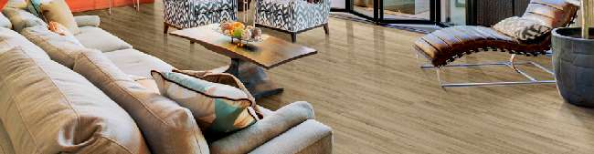 Timeless Luxury Plank | Tile