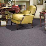 Mohawk Aladdin Carpet Perfector