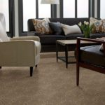 SHAW CARPET YOUR WORLD SOUTHERN ANDES