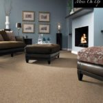 Tuftex Carpet Move-On-Up