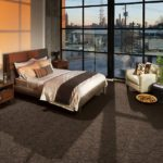 Karastan Carpet Modern Aesthetic