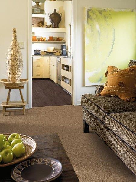 Philadelphia Carpet Specified Living