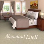 Shaw Contract Carpet Abundant Life II