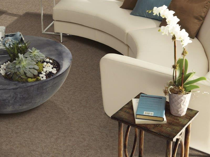 Shaw Carpet E0524_00700