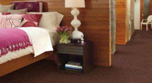 Shaw TruAccents Carpet AUTUMN