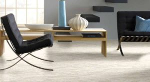 Shaw TruAccents Carpet EVEREST