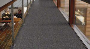 Shaw TruAccents Carpet FISH HOOK