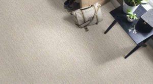Shaw TruAccents Carpet FUZZY SHEEP