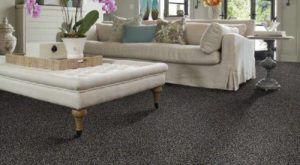 Shaw TruAccents Carpet INDIGO MOOD