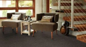 Shaw TruAccents Carpet ROCK GARDEN
