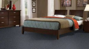 Shaw TruAccents Carpet STORM