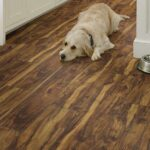 Shaw LVT | SPC | WPC | Waterproof Flooring PARAGON 7 PLUS RAINFOREST ACACIA