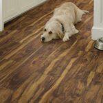 Shaw LVT | SPC | WPC | Waterproof Flooring PARAGON 7 PLUS RAINFOREST ACACIA