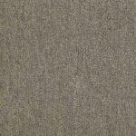 Shaw Philadelphia NEYLAND Carpet MA992_00260