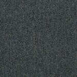 Shaw Philadelphia Carpet MA992_00310