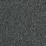 Shaw Philadelphia NEYLAND Carpet MA992_00360