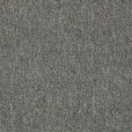 Shaw Philadelphia NEYLAND Carpet MA992_00513