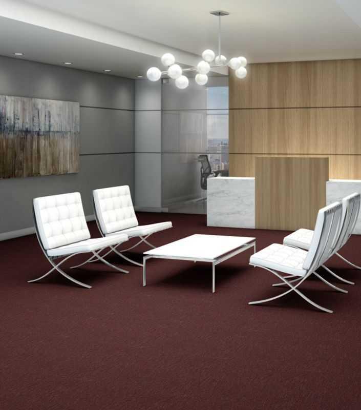 Philadelphia Commercial Carpet PROFUSION 20
