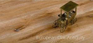 European-Oak-Antiquity